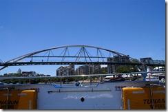 Brisbanea joelta kuvattuna (2)