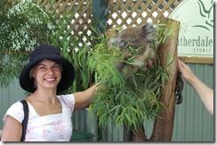 Krist ja Pan koala