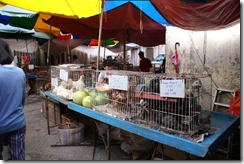Pudun marketti, kuva 6