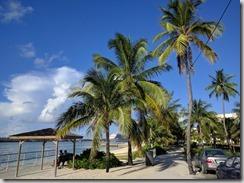 Bahama Downtown 3