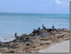 Divi beach 2