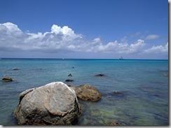 Luonnonsuojelu ranta 1